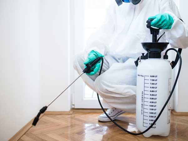 Exterminator-in-workwear-spraying-pesticide-with-sprayer